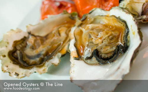 Opened-Oysters_The-Line