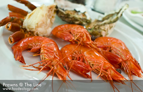 Prawns_The-Line