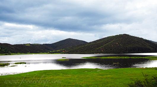 香格里拉普达措公园
