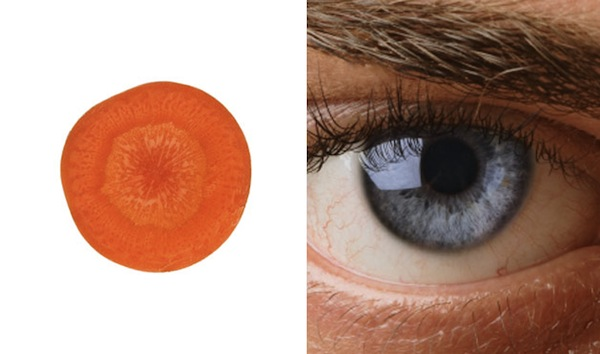 carrot and eye