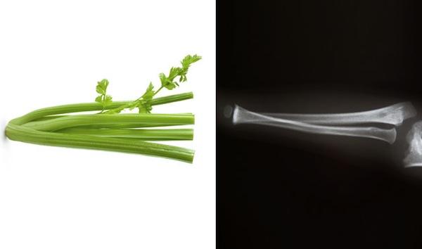 celery and bone