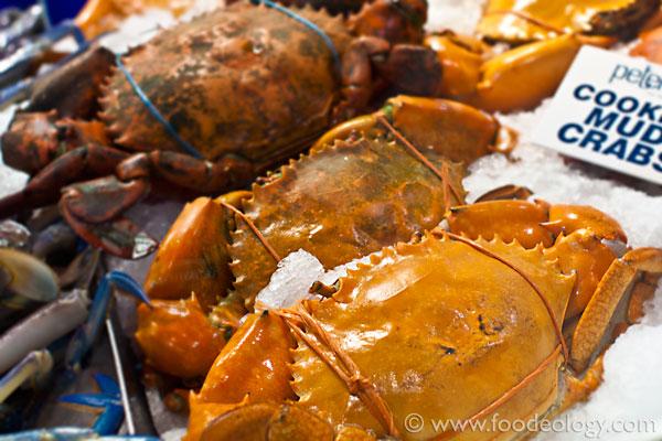 Crabs_Sydney-Fish-Market