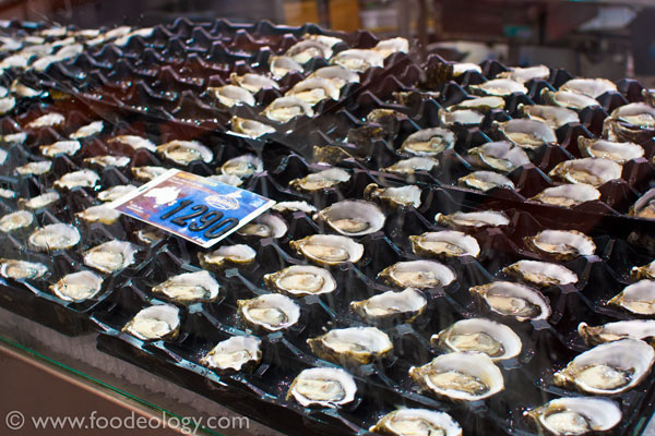 Oysters_Sydney-Fish-Market