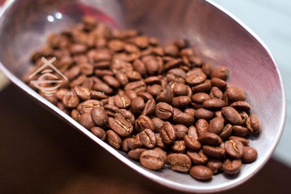 [七彩缤纷墨尔本] 墨尔本CBD最好的咖啡