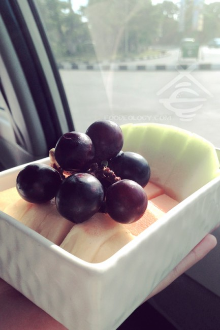 Fruits-on-the-airport transport_The-Bale