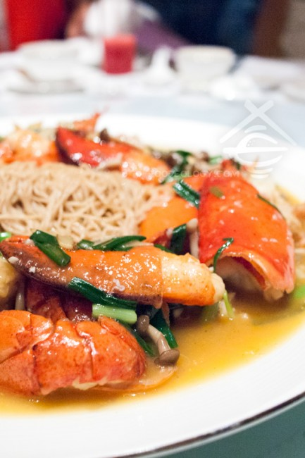 Simmered-Egg-Noodles-with-Boston-Lobster-in-Spring-Onion-and-Ginger-Sauce_Jade-Restaurant-Fullerton-Hotel