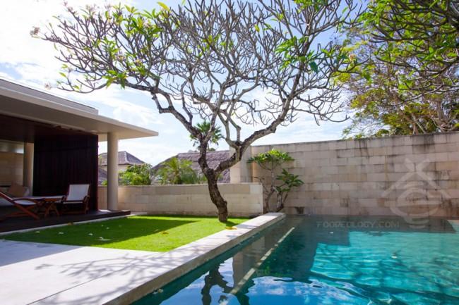 Single-Pavilion-Pool-and-Bengong_The-Bale